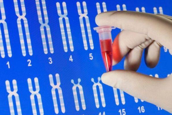Xét nghiệm ADN tại Vinh